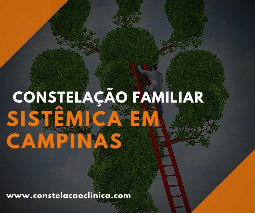 terapia da constelação familiar em Campinas